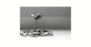 Plant sprouting from coins
